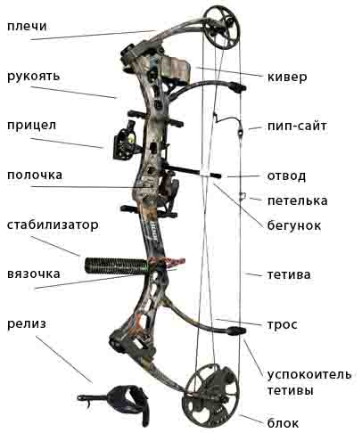 устройство лука